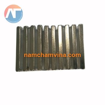 nam-cham-vien-chu-nhat-25x10x5mm